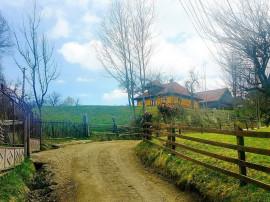 Coldwell Banker Alpin: Zona verde
