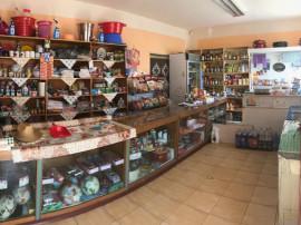 Foeni - Afaceri Multiple + Locuinta - 1000 euro