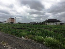 Couna Berceni: Teren intravilan strada Miorita