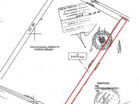 Teren extravilan 5900 mp in Pielesti, Dolj
