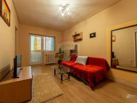 Apartament o camera Banu Maracine