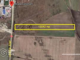 Teren pentru activitate industriala, Centura Arad, 13042 mp