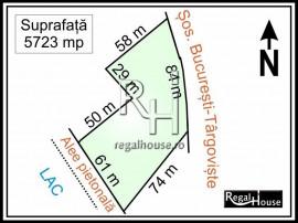 Straulesti - Doi Cocosi stradal, teren 5723 mp