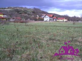 Teren intravilan in Oradea (Podgoria)