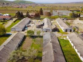 Teren 25.000 mp plus construcții 5700 mp Bacău, Com. G
