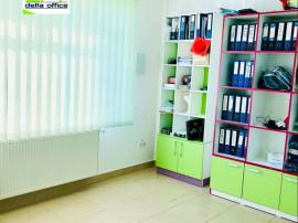 Spatiu birou, Viisoara