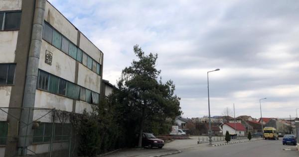 Spatii de birouri, comerciale, hale ind, Poiana Campina - PH