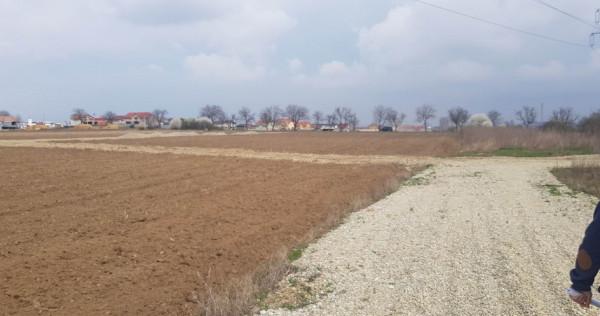 Teren 4060 mp - Oradea/Santandrei