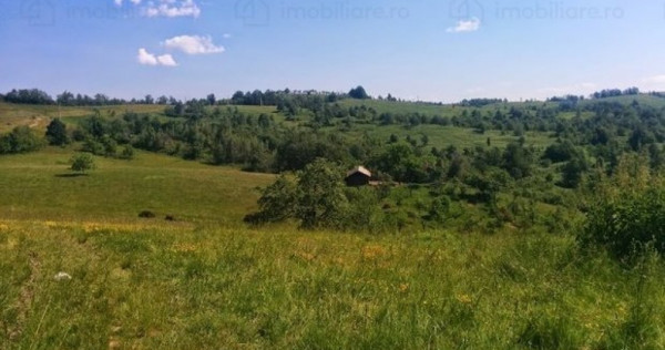 1,6 ha teren arabil si faneata in Caras Severin