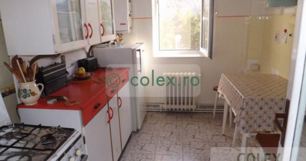 Apartament in Busteni