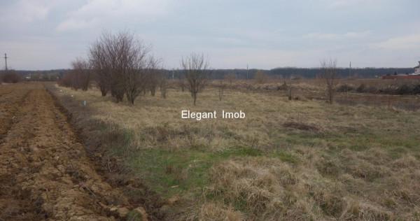 Teren Intravilan Snagov - Ghermanesti