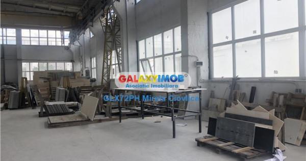 Hala in Parc industrial Prahova