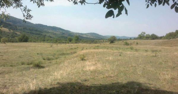 Teren extravilan (pasune) 15 Hectare comasate in sat   Mihae