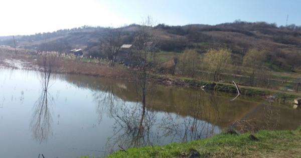 Teren pentru lac 11.451 mp la Santejude Vale comuna Taga
