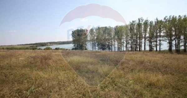 Teren extravilan de vanzare Valea Argovei
