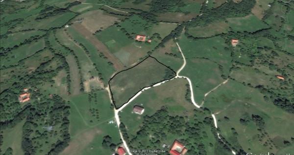 Teren Bran - Sohodol 11300 mp