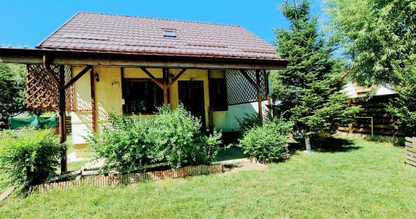 Casa Balotesti Good Afternoon Residence