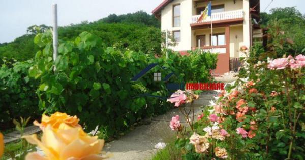 OAZA DE RELAXARE, vila cu 5 camere in Bucsani